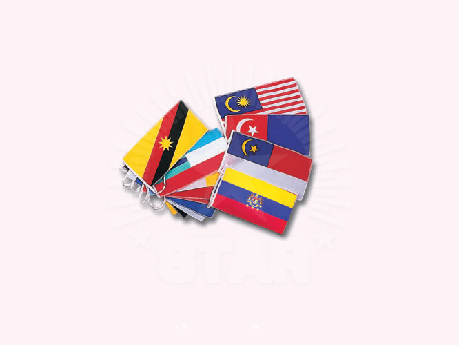 All States Bunting | 各州旗串